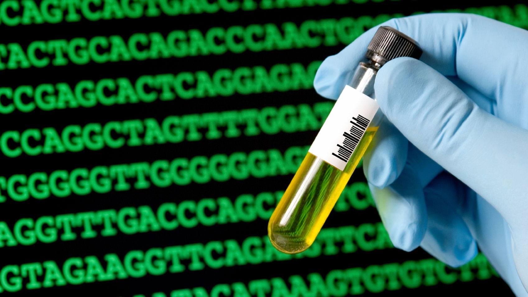 Dịch vụ xét nghiệm ADN